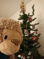 Kiekeboe, de Kerst-beer bij de kerstboom.